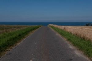 The road. Photo: Michael Hammel